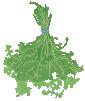 herb-marjoram-bundle